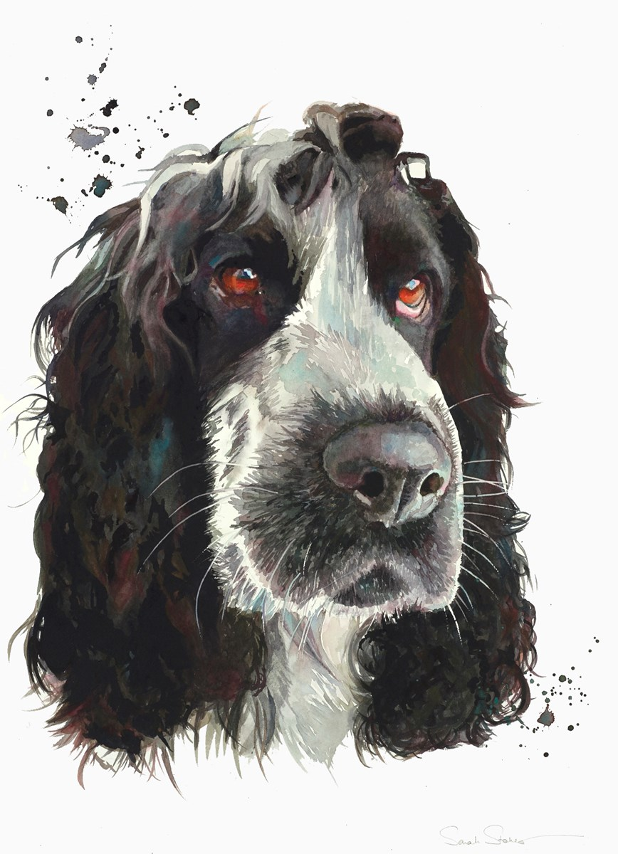 That Look by sarah stokes -  sized 22x30 inches. Available from Whitewall Galleries
